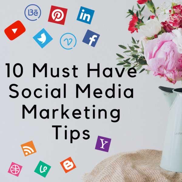 BOGT social media